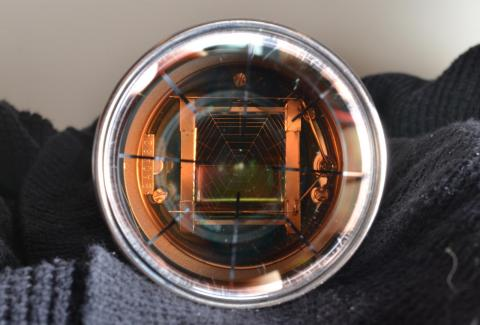 Interior structures of a Hamamatsu R8778 photomultiplier tube, as used in the LUX dark matter experiment. Photo by Ethan Bernard.
