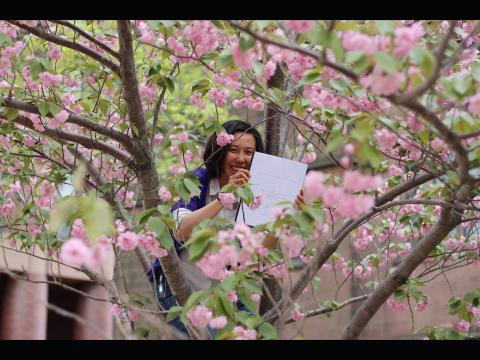 Justin Myles. Undergraduate Grace Pan '17 with her senior thesis in a tree in front of Sloane Physics Lab. Submitted by Carolyn Zhang
