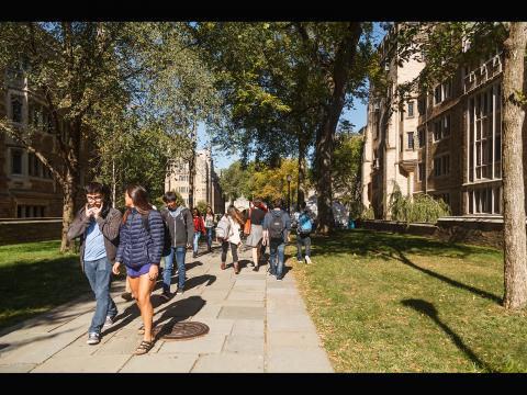 Cross Campus as seen on an autumn day, taken by George Iskander