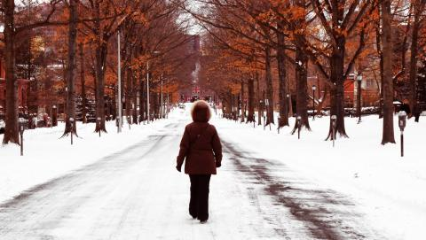 Strolling on snowy Hillhouse Avenue (photo by Fabio Del Sordo)
