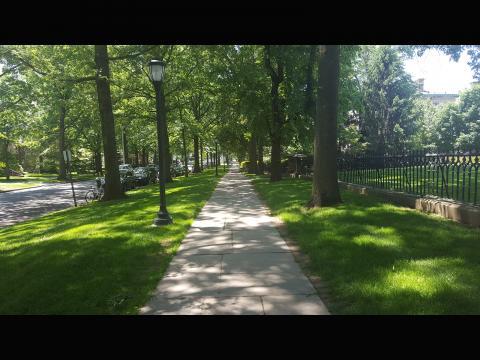 Geriana Van Atta. Hillhouse walk in June