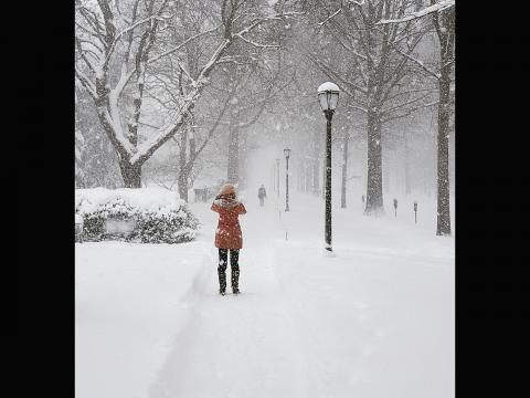 Chase Shimmin. Portrait of a portrait taken during a snowy day on Hillhouse ave.