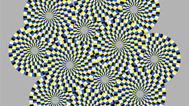 In this stationary image, viewers should see the circles rotating in different directions. The effect is particularly pronounced when the viewer's eyes move or blink. (Illusion credit to A. Kitaoka; illustrated by R. Tanaka)